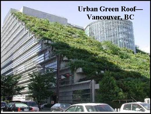 urban green roof